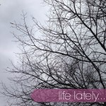 Lately…