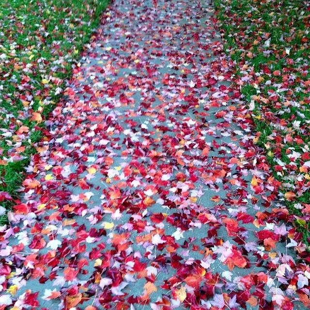 magical_sidewalk