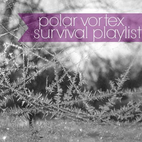 polar_vortex_survival_playlist